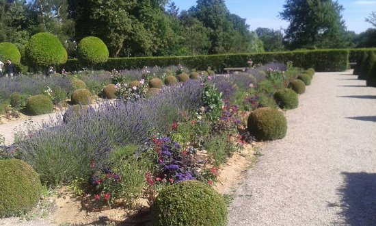 Côté floral au Parc de Sceaux