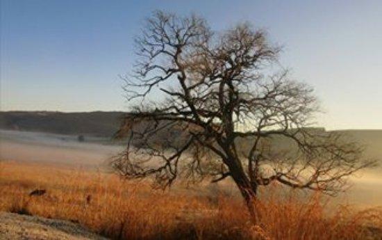 Dullstroom, Sudáfrica: Beautiful Landscape