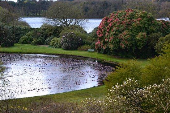 Stranraer, UK: Pond