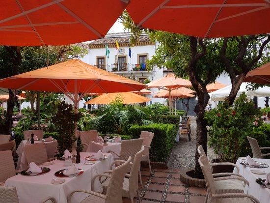 terrazas de la plaza de los naranjos donde esta ubicado el ForDonde Queda Terrazas