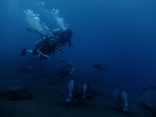 Tulamben, Indonesia: early morning dive at usat liberty wreck