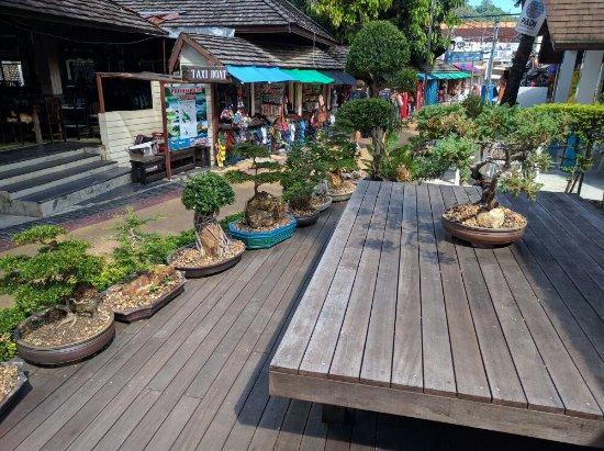 Phi Phi Banyan Villa: IMG_20160716_095305_large.jpg