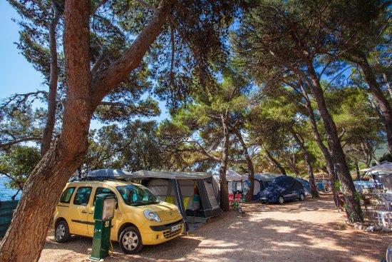 Camping Rapoca