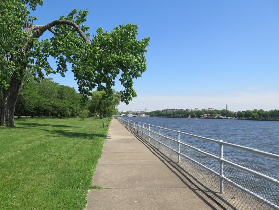 The trail around Hains Point Picture of Hains Point Washington DC