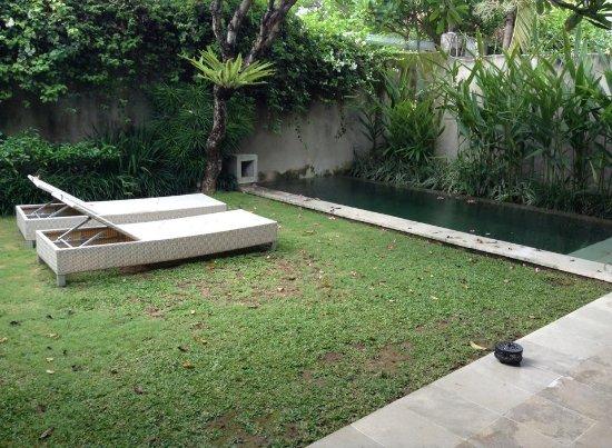 Uma Sapna: our private garden and pool