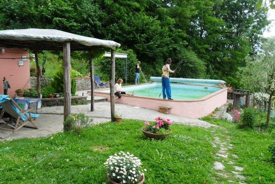 Castiglione di Garfagnana, Italia: Piscina e relax in giardino!