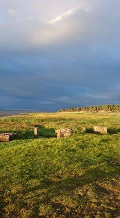 Tentsmuir, easy walk from caravan at Tayport Links Caravan Park.