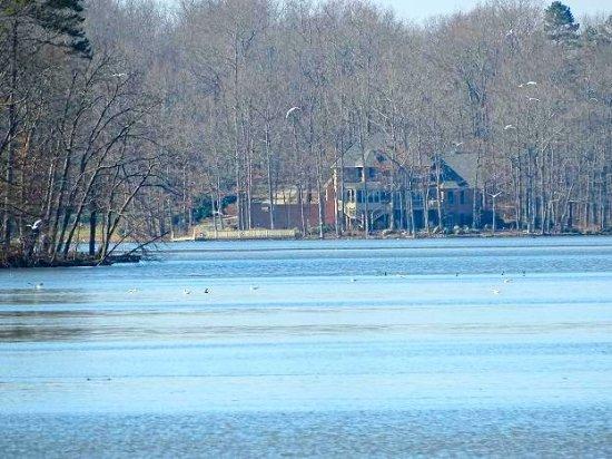 High Rock Lake: living on the lake