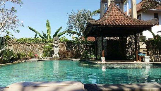 Ubud Bungalow: Petit déjeuner et piscine