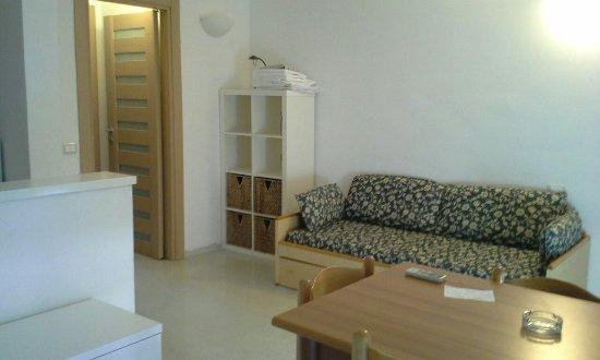 Aviotel Residence Hotel : Soggiorno