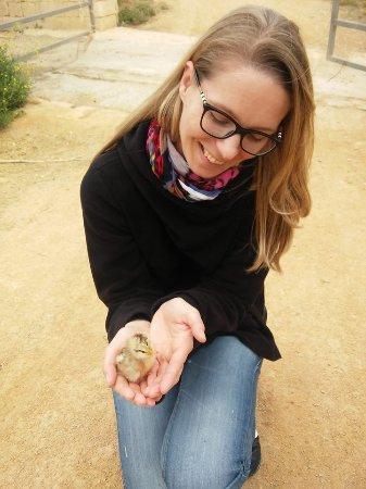 Xaghra, Malta: baby of the family