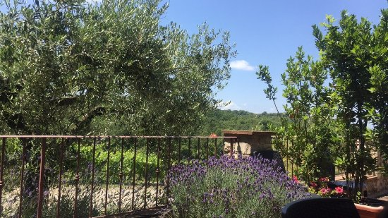 Almuerzo En Hermosa Terraza Exterior Picture Of Azienda
