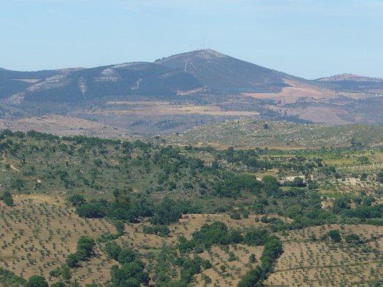 Figueira de Castelo Rodrigo, Portugal: A Marofa vista a partir dum olival de Pinhel.