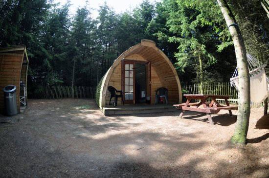 Market Rasen, UK: The Ark in it's own fenced off area in the woods