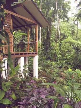 Cocles, Kosta Rika: notre casa