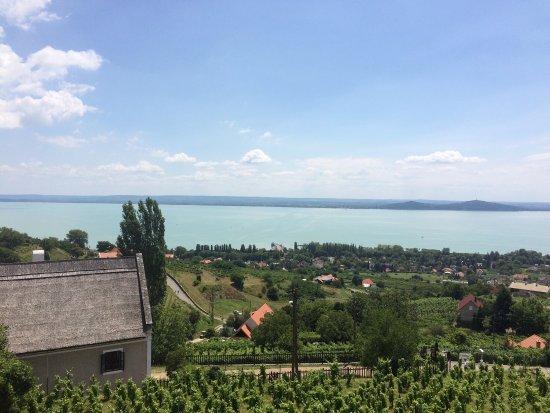 Badacsonytomaj, Ungarn: Ma minden együtt volt. Kényeztetés a szemnek, az ízlelőbimbóknak és a fülnek 😊 Köszi! 🙏