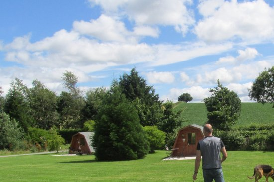 Craven Arms, UK: Beautiful grounds