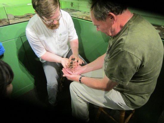 Victoria Bug Zoo: Meet Norah