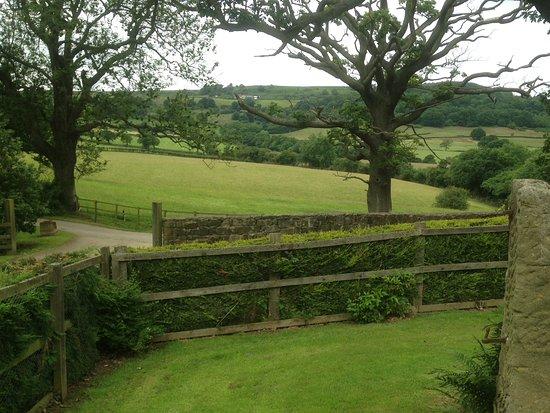 Newbiggin Hall Cottages: Garden