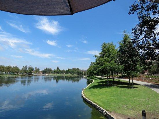Rancho Santa Margarita, CA: View from Carmelita's patio