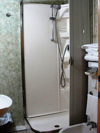Hotel Villa Kinzica: Bathroom with a moldy curtain
