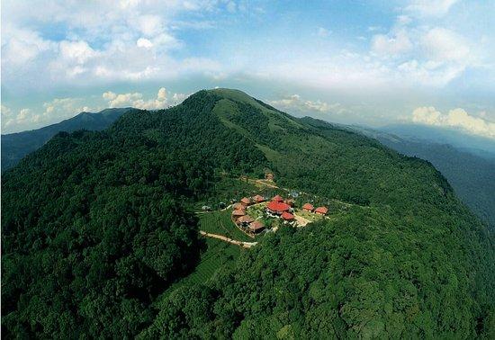 Wild planet jungle resort devala lodge reviews photos - Plante jungle ...