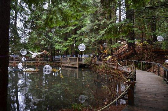 Норт-Ванкувер, Канада: camino humano en medio de la naturaleza