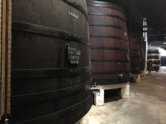 Offley Cellars : photo2.jpg