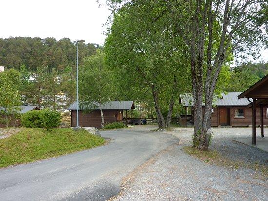 Zdjęcie Flora Municipality