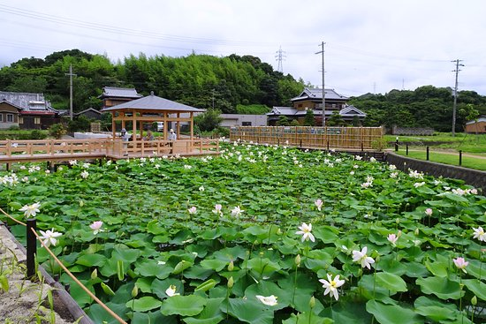 Gobo, Japan: 全 景