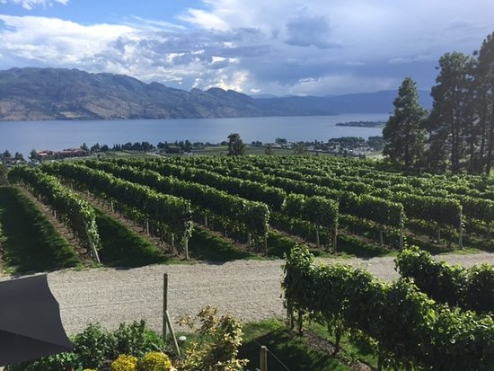 West Kelowna, Kanada: Mission Hill vineyards and Okanagan Lake.