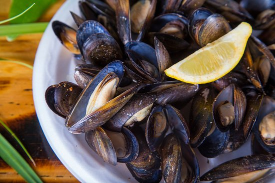 Blue Lipped Mussels