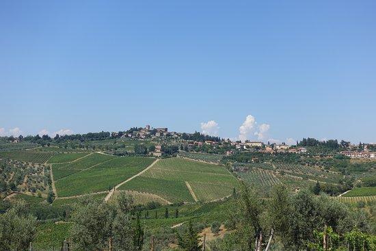 Tuscany Car Tours: Beautiful Tuscany from SR222.