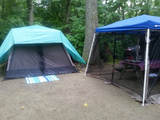 Seashore Campsites & RV Resort : 20160713_170421_large.jpg