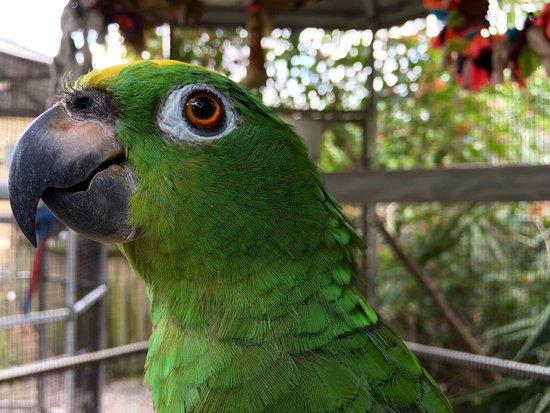 Busch Wildlife Sanctuary : photo4.jpg