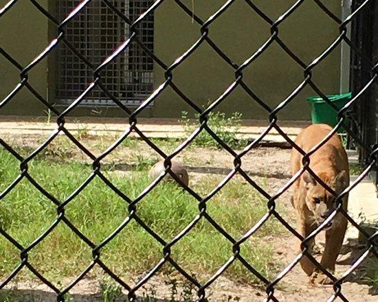Busch Wildlife Sanctuary : photo5.jpg