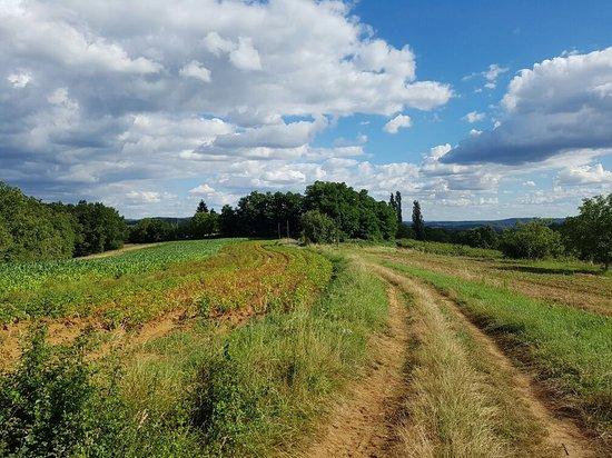 Sainte Nathalene, Γαλλία: La Ferme de le Tour