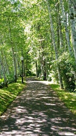 Montesano, Waszyngton: Great trail for walking on around Lake Quigg