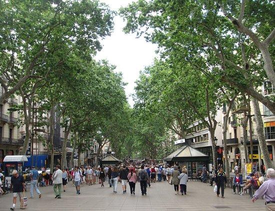 Les rambles picture of las ramblas barcelona tripadvisor for Ramblas barcellona