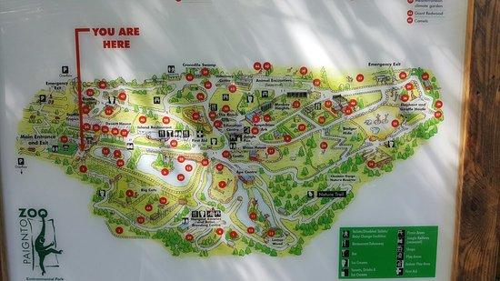 Paignton Zoo Environmental Park  Picture of Paignton Zoo