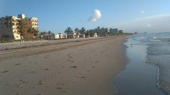 Hollywood Beach-bild