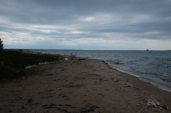 Cheboygan, MI: There were a lot of biting flies on this beach - bring your bug spray!