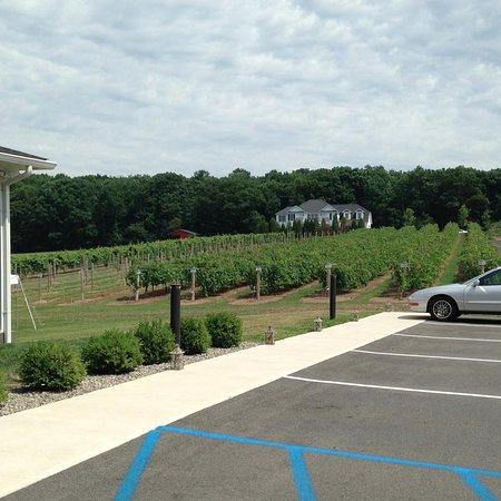 Saylorsburg, Pensilvania: The owner's estate