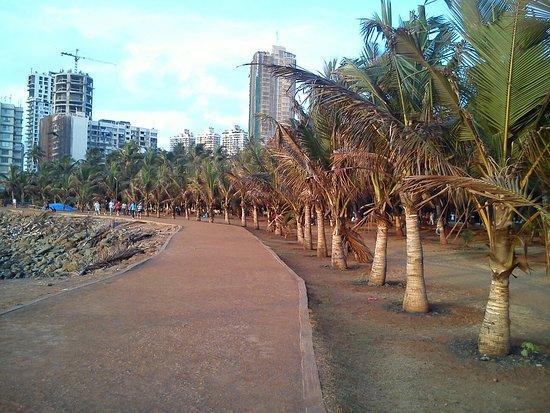 Dsc 0082 Large Jpg Picture Of Priyadarshini Park Mumbai Tripadvisor
