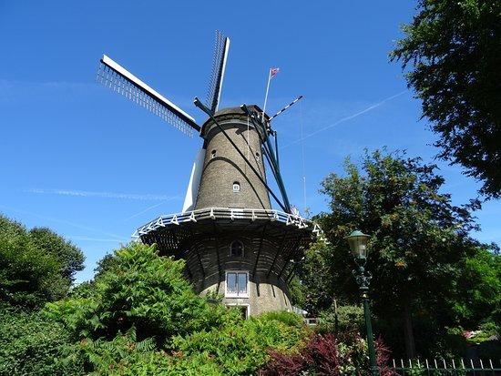Molen van Groot (Piet)