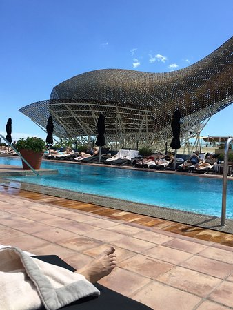 Hotel Arts Barcelona: Pool view looking toward Gehry's famed fish sculpture. The Med is in the background.