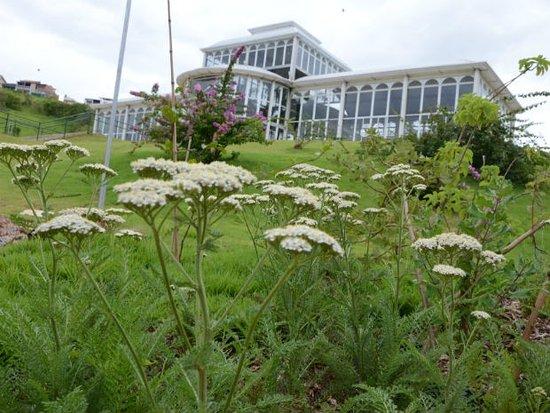 Jardim botanico Irmaos Vilas Boas: Passeio agradável com a familia