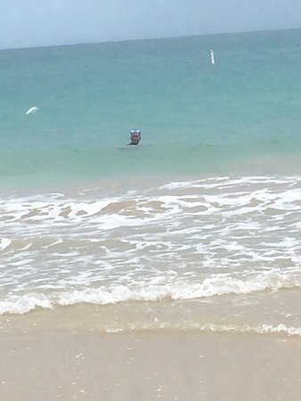 Pine Grove Beach : photo1.jpg