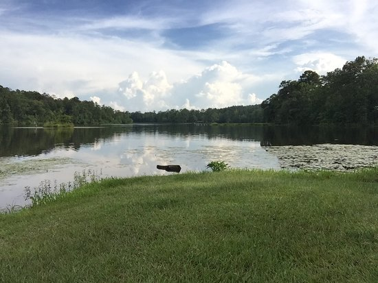 Moundville, AL: Payne Lake Recreation Area
