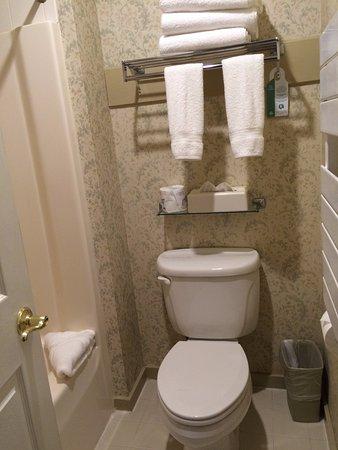 Golden Eagle Resort: Very small bathroom. Sink is in bedroom area.